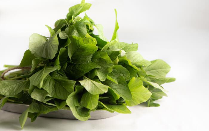 Amaranth (Thotakura) Green